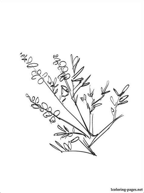 heather coloring page   coloring pages