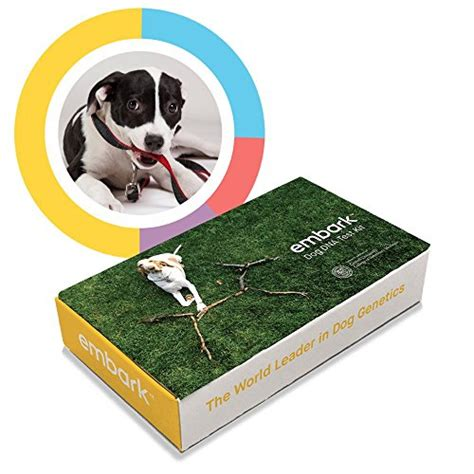 embark dna embark dna test kit review does it work and how to use it