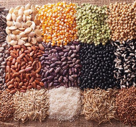 come si usano i semi di lino in cucina semi come si usano dott ssa elettra terzani nutrizionista