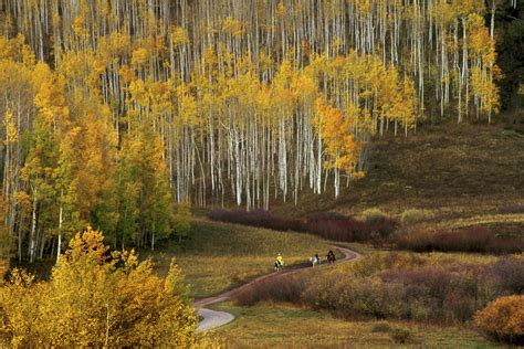 best fall colors fall color guide best hikes and drives in colorado