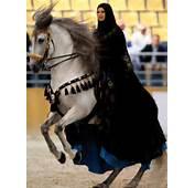 الموضوع صور خيول عربيه اصيله  أعشــق