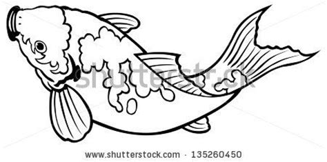 carp fish coloring pages top 66 ideas about ideas inspiration on pinterest koi