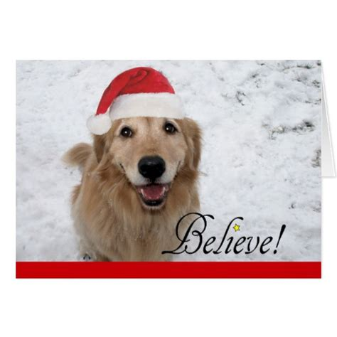 golden retriever cards golden retriever believe greeting card zazzle