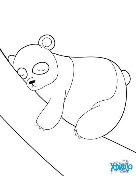 imagenes de osos fuertes image gallery oso panda para colorear