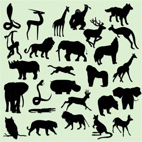 printable jungle animal silhouettes safari jungle animal silhouettes clip art instant download