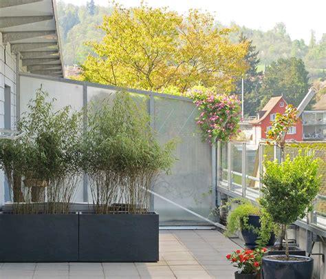 sichtschutz pflanzen terrasse bambus als sichtschutz f 252 r terasse und balkon bambus und
