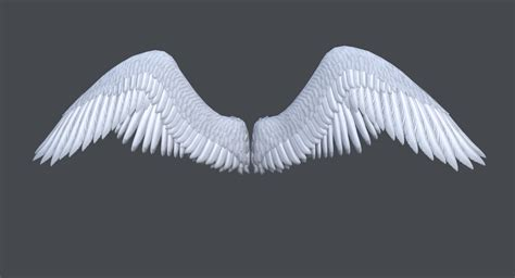 Wings Of A wings www pixshark images galleries with a bite