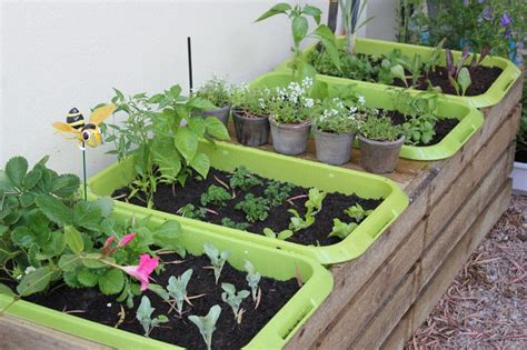 Self Watering Plastic Totes Made More Attractive By Wood Self Watering Vegetable Garden