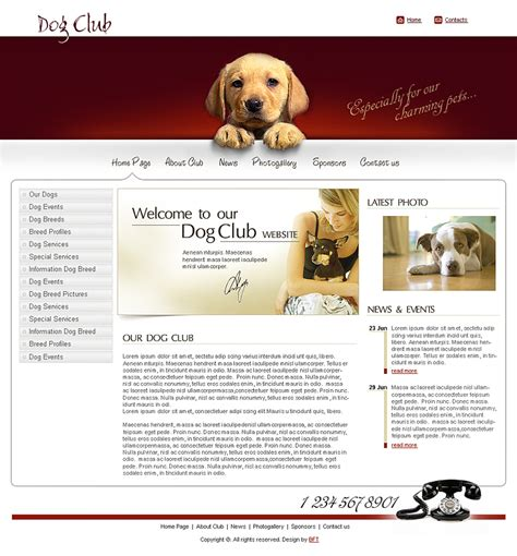 template for a phlet free animals and pets template pet club pet stores
