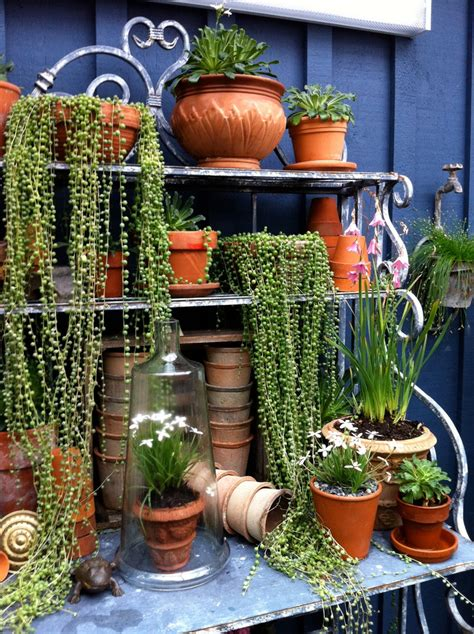Decorating Patio With Potted Plants by Amazing Wrought Iron Plant Stands Outdoor Decorating Ideas