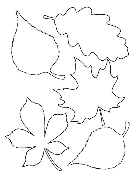 autumn leaf template free printables 25 unique leaf patterns ideas on leaf