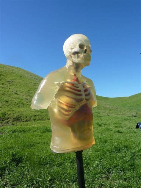ballistic dummy i science art pinterest