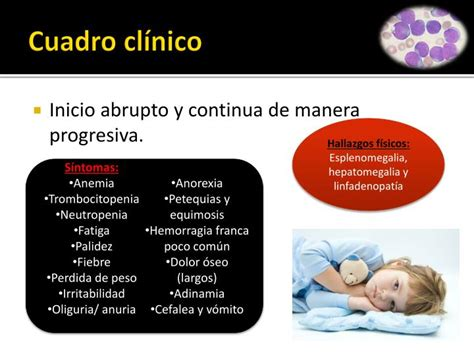 cuadro cl nico ppt leucemia linfobl 225 stica aguda lla powerpoint