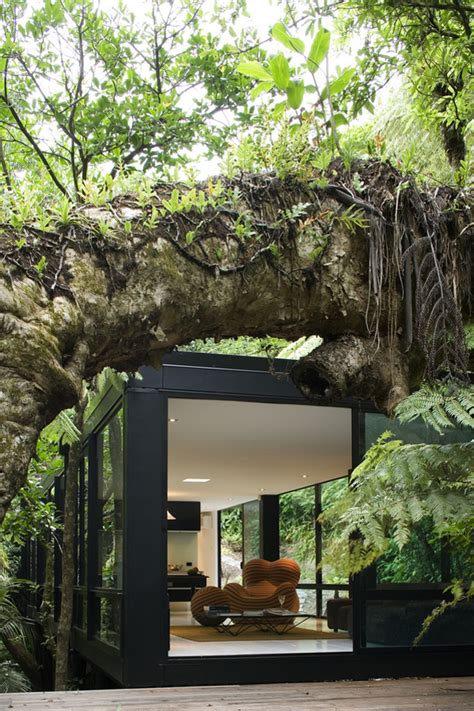 forest house design modular glass forest house in new zealand