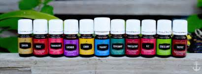 how to join young living and become a wholesale distributor