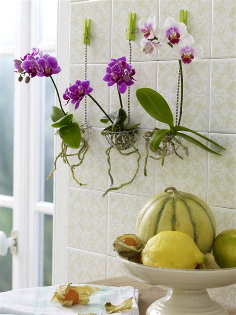 flowers in the bathroom k 252 chendeko zum selbermachen 944329