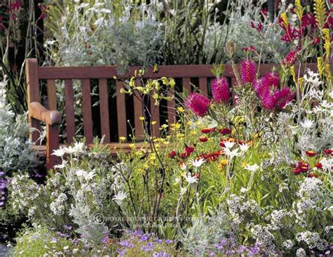 cottage gardens in australia best 25 australian garden ideas on
