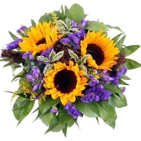 Pflanzen Versand 1272 by Sommer Specials Zum Sommeranfang Blumen