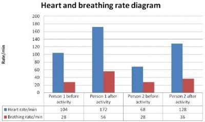 respiratory rate respiration lab and breathing rate during activity science123
