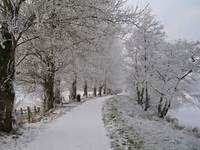 Winter Scene Bann Boulevard Portadown &169 Geoff Flannagan Cc By Sa