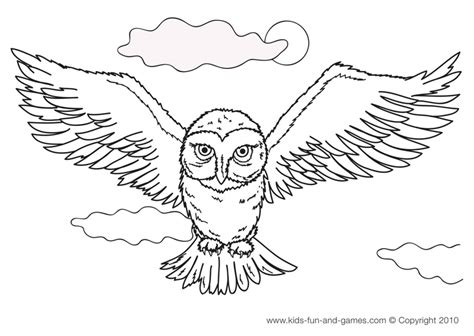 realistic owl coloring pages owl coloring pages easy