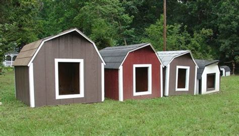 painted dog houses 30 dog house decoration ideas bright accents for backyard designs