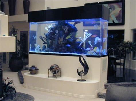 tanked tv show tanked pinterest tvs aquarium setup and fish tanks