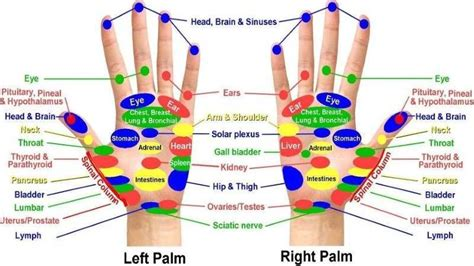 acupressure diagram of pressure points acupressure points chart for relieving