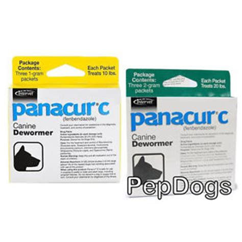 roundworm treatment for puppies panacur c canine dewormer roundworm hookworm tapeworm whipworm treatment ebay