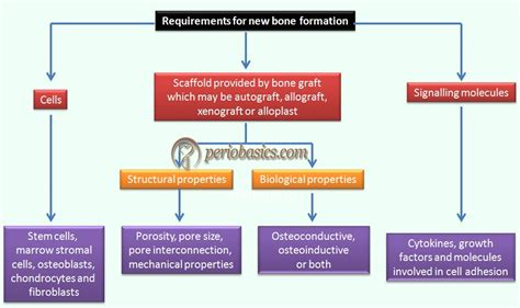 New Bosnew 2 new data flow diagram for admission process diagram