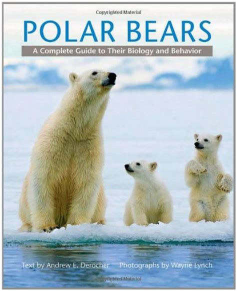 libro the polar bear libro polar bears di stirling ian