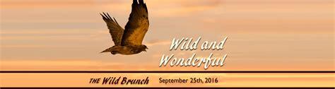 2016 wild brunch sponsors california wildlife center