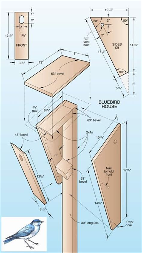Wood Magazine Online Bluebird House Build It Pinterest Bluebird House Plans