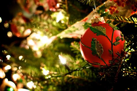 garland and the ball on the christmas tree wallpapers and
