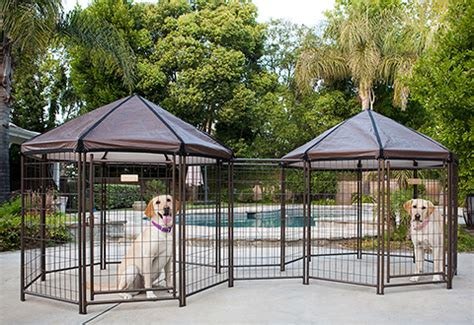 pet gazebo pet gazebo sharper image