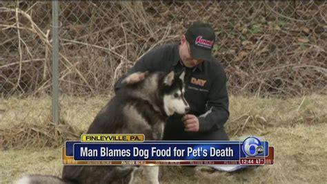 siberian husky puppy food food killed my siberian husky pa says 6abc