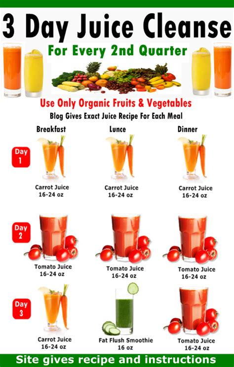 Liquid Detox Diet 1 Day by 3 Day Juicing Diet Plans Newsspacecq
