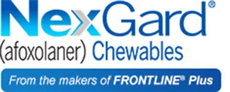 nexgard side effects beef flavored chews for dogs nexgard 174 afoxolaner