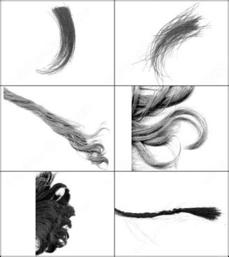 download hair brushes for photoshop cs3 photoshop brushes for free download about 2 368
