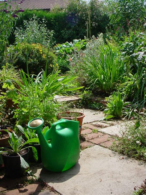 Gardening Ideas On A Budget Gardening On A Budget 10 Low Cost Gardening Tips The Garden Glove