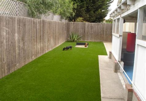 artificial turf for dogs synthetic turf fixes lawn drainage pet issues with grass