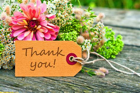 Thank You Flowers by 316 Images For Thank You Pictures Photos Pics Greeting