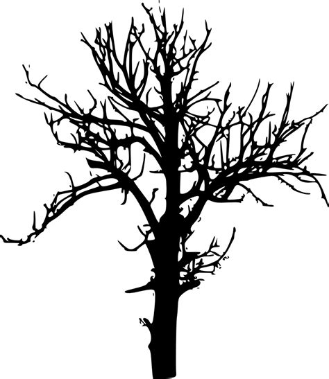 tree pattern png 10 tree silhouettes png transparent background onlygfx com