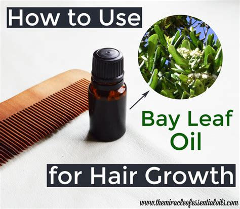 essential oils for hair growth and thickness essential oils for hair growth and thickness essential
