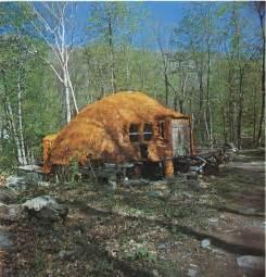 design log cabin online