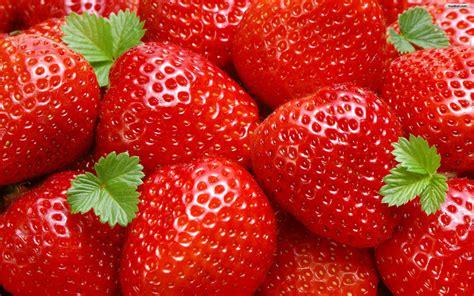 imagenes hd frutas nature wallpaper frutas hortalizas rosybrown fondo de