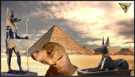 ancient dogs why ancient egyptians mummified 8 million dogs found in anubis god of mass