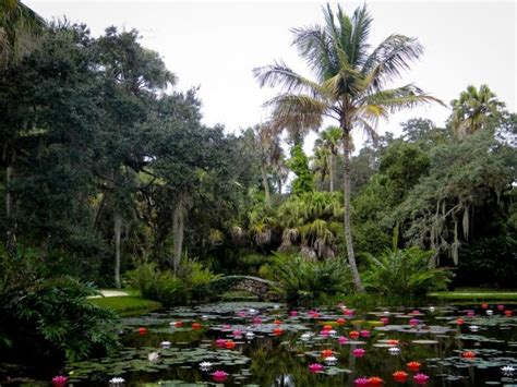 Mckee Botanical Garden The Small Town In Florida You Ve Never Heard Of But Will Fall In With