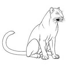 panthers coloring pages carolina panthers logo coloring page free printable