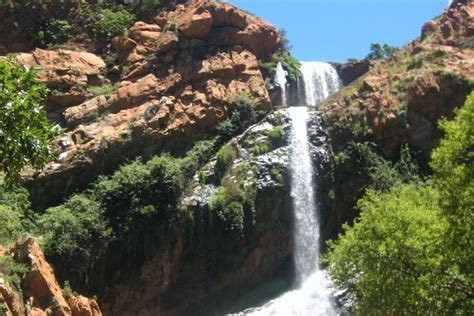 Walter Sisulu National Botanical Garden Walter Sisulu National Botanical Gardens Roodepoort South Africa